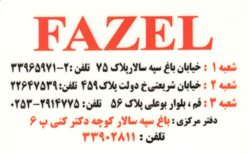 fazel-shoes