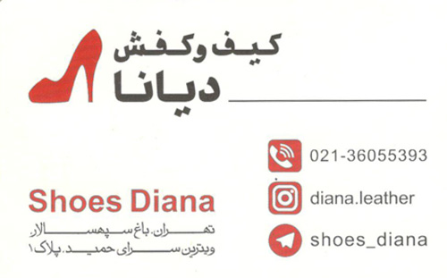 diana-shoes-bag