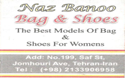 nazbanu-shoes-bag